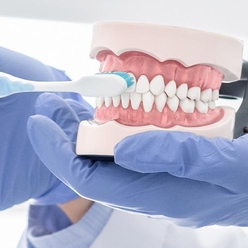 活動式假牙的清潔 這4個步驟不能省